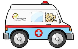 http://helderkruinvet.co.za/wp-content/uploads/2016/09/ambulance_comic-320x200.jpg